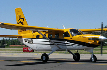 Quest Kodiak Image